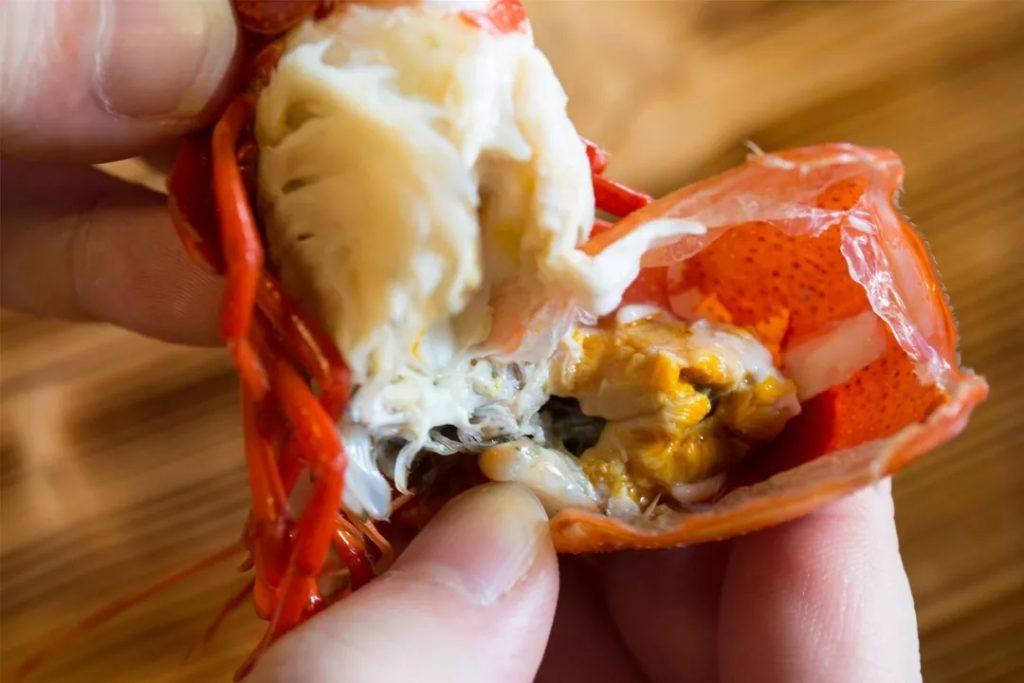 关于小龙虾你可以参考的几件事